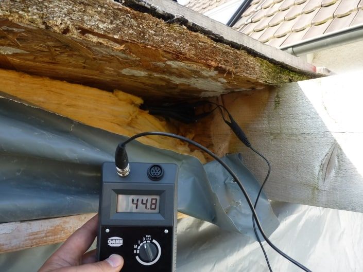 Gutachten am Bau - Holzschäden und Holzfäule – Wasserschäden