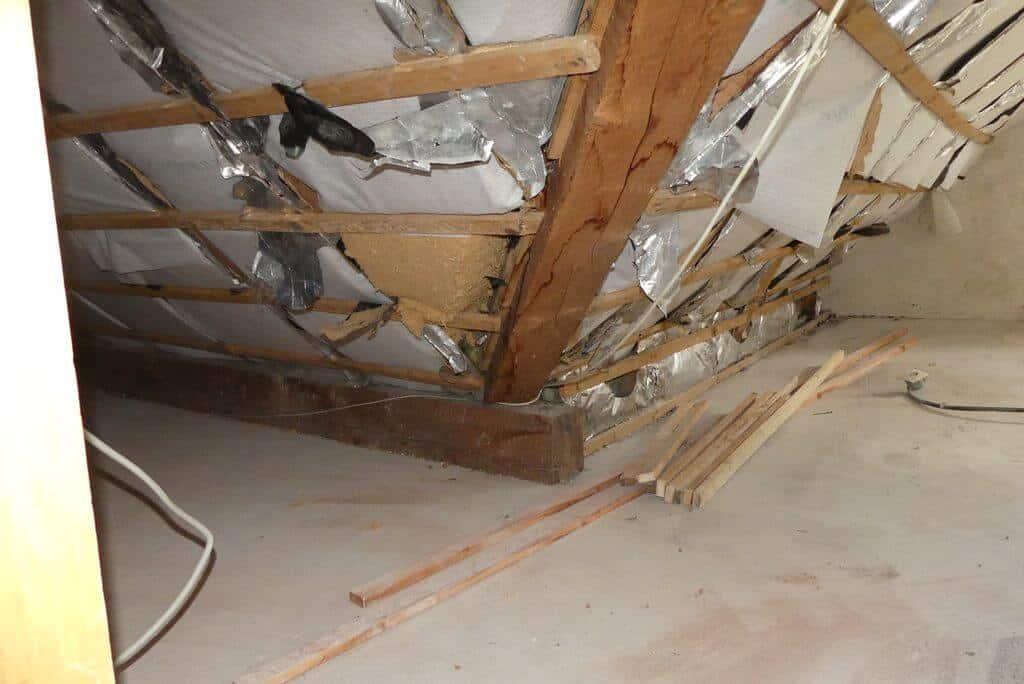 Gutachter für den Feuchte- und Wärmeschutzes bei Dach und Wand