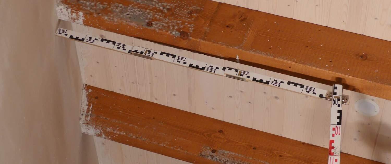 Gutachten Schimmelpilze am Dachstuhl